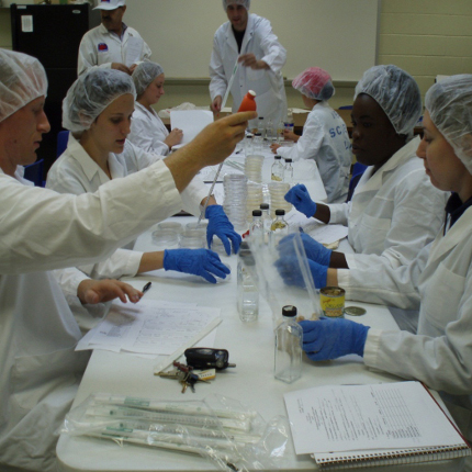 Undergraduates enrolled in food safety and microbiology learn how to conduct microbial analyses on various food products. (Photo courtesy of John Marchello)