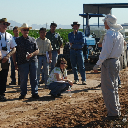 Arizona Pest Management Center Director Peter Ellsworth discusses the outcomes of integrated pest management practices with growers in a cotton field. (Photo: APMC)