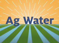 """Ag Water was designed for the agriculture industry and has received overwhelmingly positive responses from stakeholders during test-play at agriculture conferences, meetings and workshops across the nation,"""" says Dametreea Carr, assistant health educator in UA Cooperative Extension."""