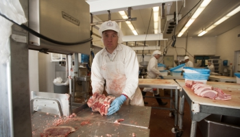 Animal Industry Emphasis: Production / Business Path Degree in the College of Agriculture and Life Sciences, University of Arizona