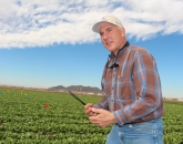 Endowed Chair Will Combat Insect Threats to Arizona Fields