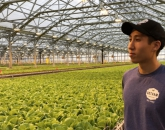 UA Alum Banks on Indoor Agriculture